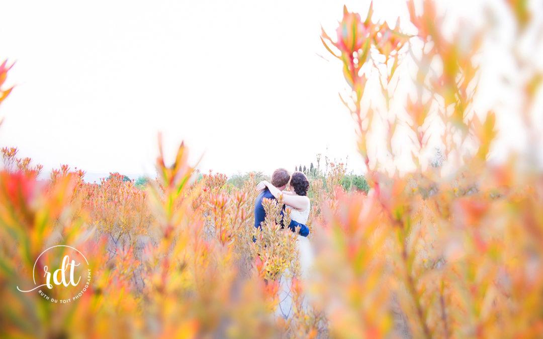 Anton & Nisda Stunning Wedding – Harmonie Proteas