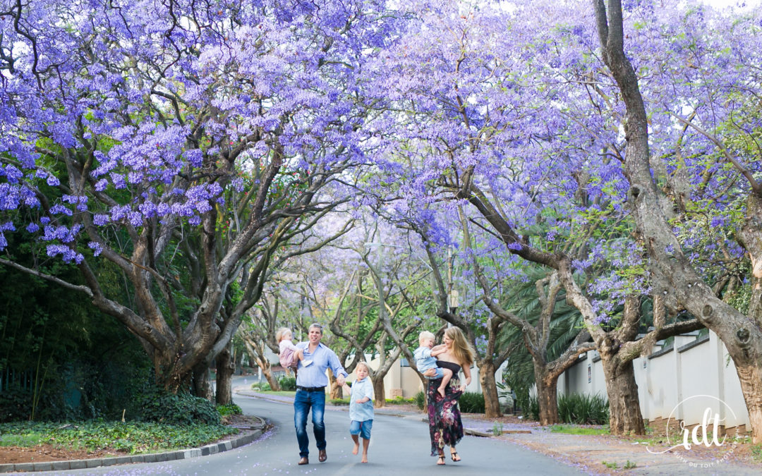 FAMILY SHOOT | LOCATION | JACARANDA TREES